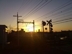 名古屋シティ12