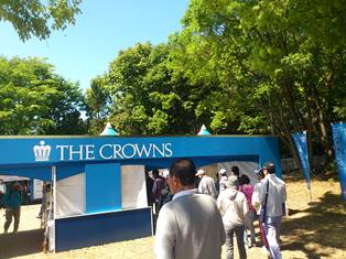 crowns1