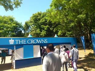crowns1