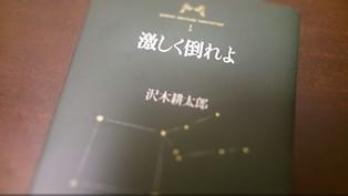 hagesiku14