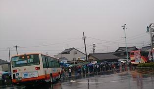 ibi333