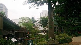 tutaya141